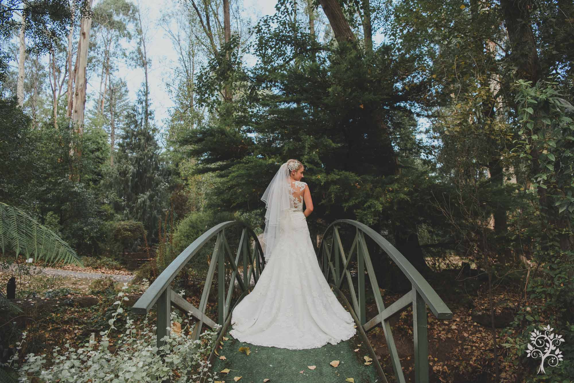 Dandenong Mount Range Wedding