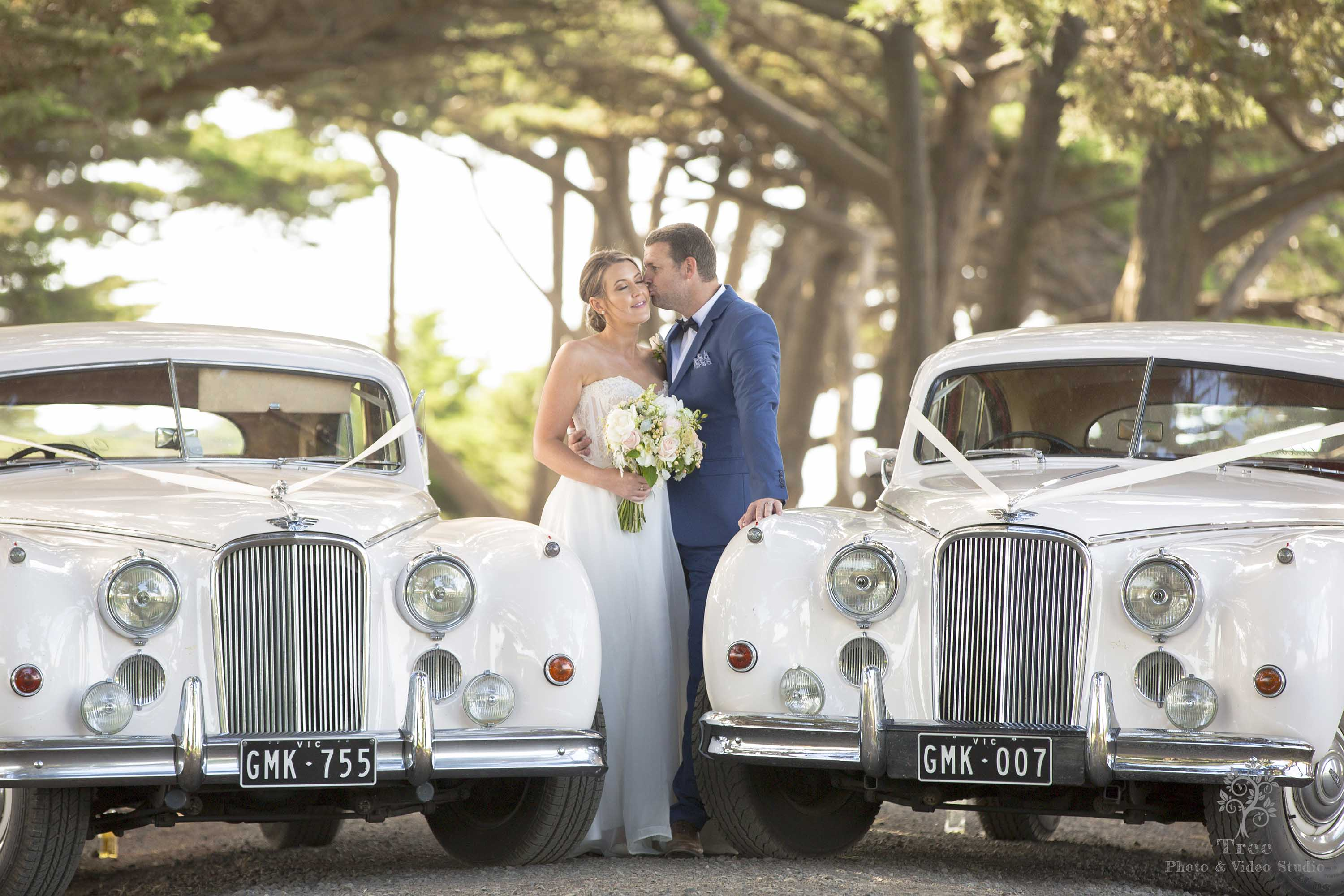 <a href=&quot;http://www.treephotovideo.net.au/melbourne-wedding-photography-gallery-2/&quot;>Gallery</a>