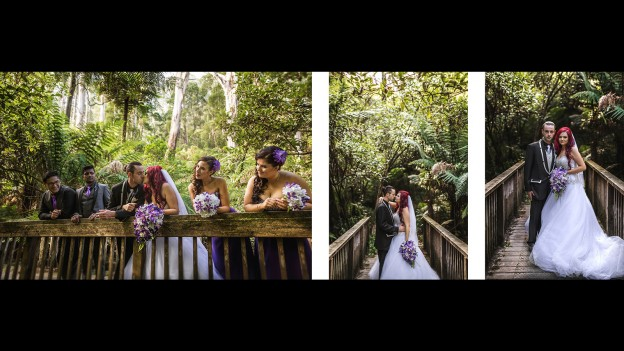 wedding location shoot in Dandenong