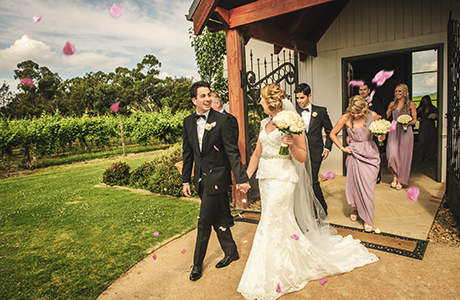 Danielle & breon immerse in the yarra valley wedding video