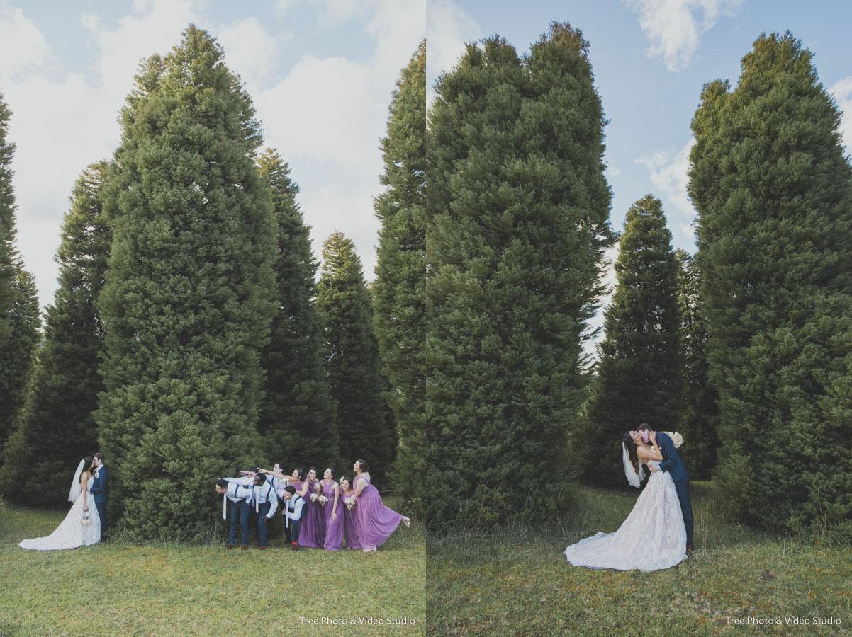 Tree_A&M_2022