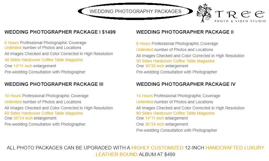 Wedding Photography Prices and Packages in Melbourne – Tree