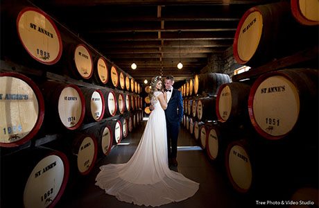 St Anne's Vineyards Wedding 2