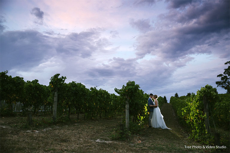 Yarra ranges estate Wedding 1