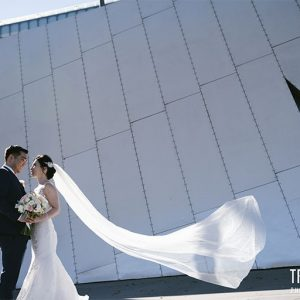 Sandy & andy@cargo hall wedding video