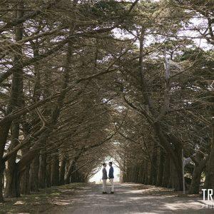David & dom @ baie wines wedding photography